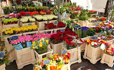 ทำ SEO ให้ร้านขายดอกไม้